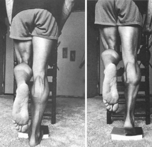 Single Leg Calf Raises By Arnold
