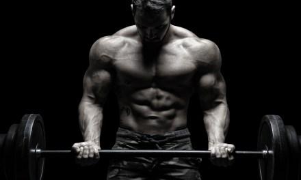 Ganadores de peso ¿qué son? y sus propiedades