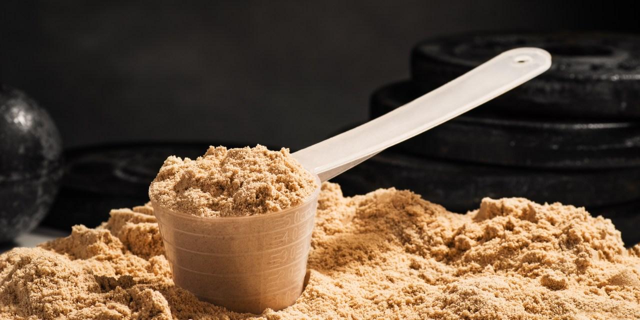 El calor y la proteína en polvo
