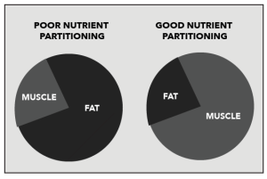 inflammation and nutrient partitioning