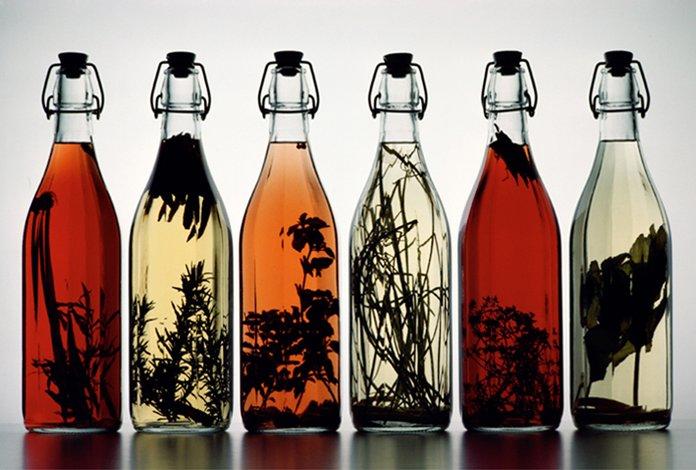 Настойка золотого уса на водке и спирту: лечебные свойства и применение. Золотой ус лечебные свойства и противопоказания