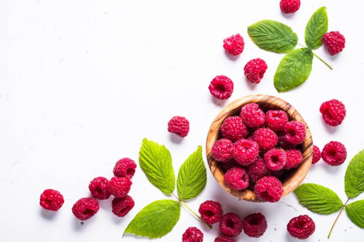 Fiber-rich raspberries for gut health