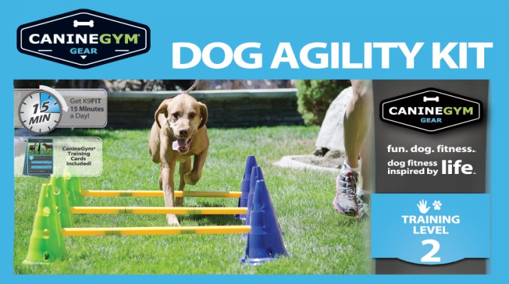 DogAgility_Kit_CanineGymGear