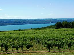 finger-lakes-wine-month