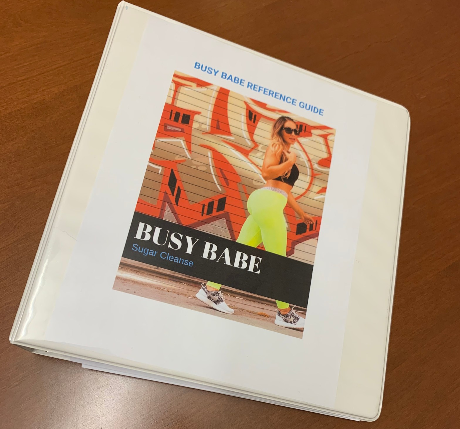 binder showing cover of busy babe sugar cleanse