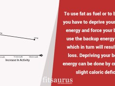 Using Fat as Fuel For Efficient Fat Loss