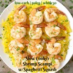 Lighten up your shrimp scampi with this slow cooker version. This easy shrimp scampi recipe is served with spaghetti squash and cooked all in one pot.