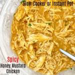 cover pic for 5-Ingredient slow cooker instant pot spicy honey mustard chicken
