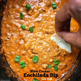 Slow Cooker Enchilada Dip (Low Carb)