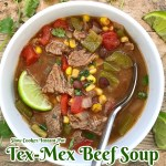 cover pic for {VIDEO} Slow CookerInstant Pot Mexican Beef Soup