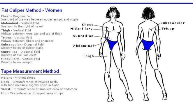 Measuring sites female- skinfold