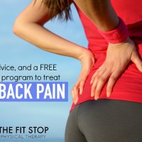Best Home Exercises For Back Pain