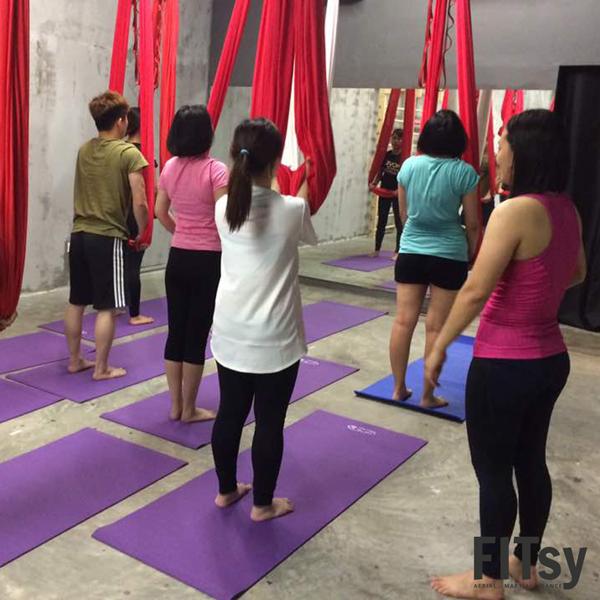 Teacher Training Program - Instructor Training Program - Aerial - Flying Yoga