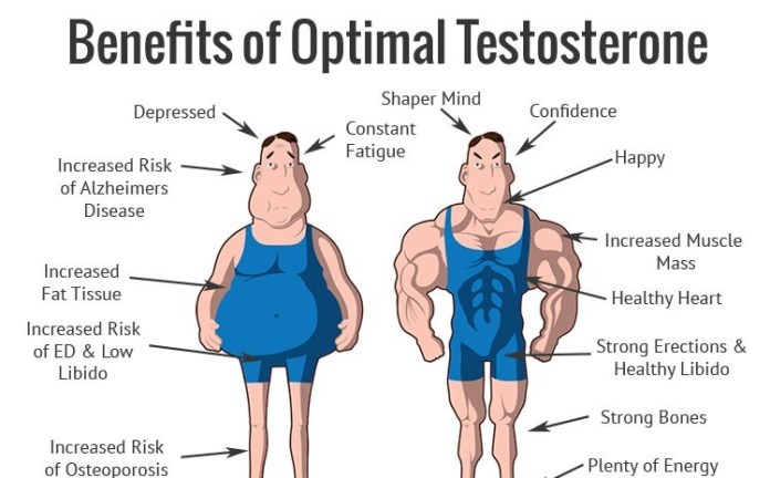 Testosterone Boosting Foods List: Foods that increase test