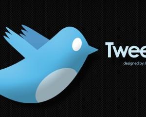twitter-bird-wallpaper