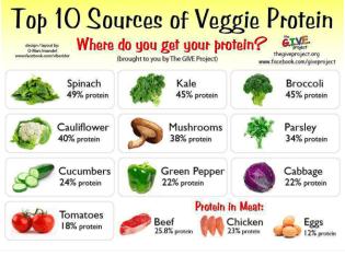 Veggie Protein