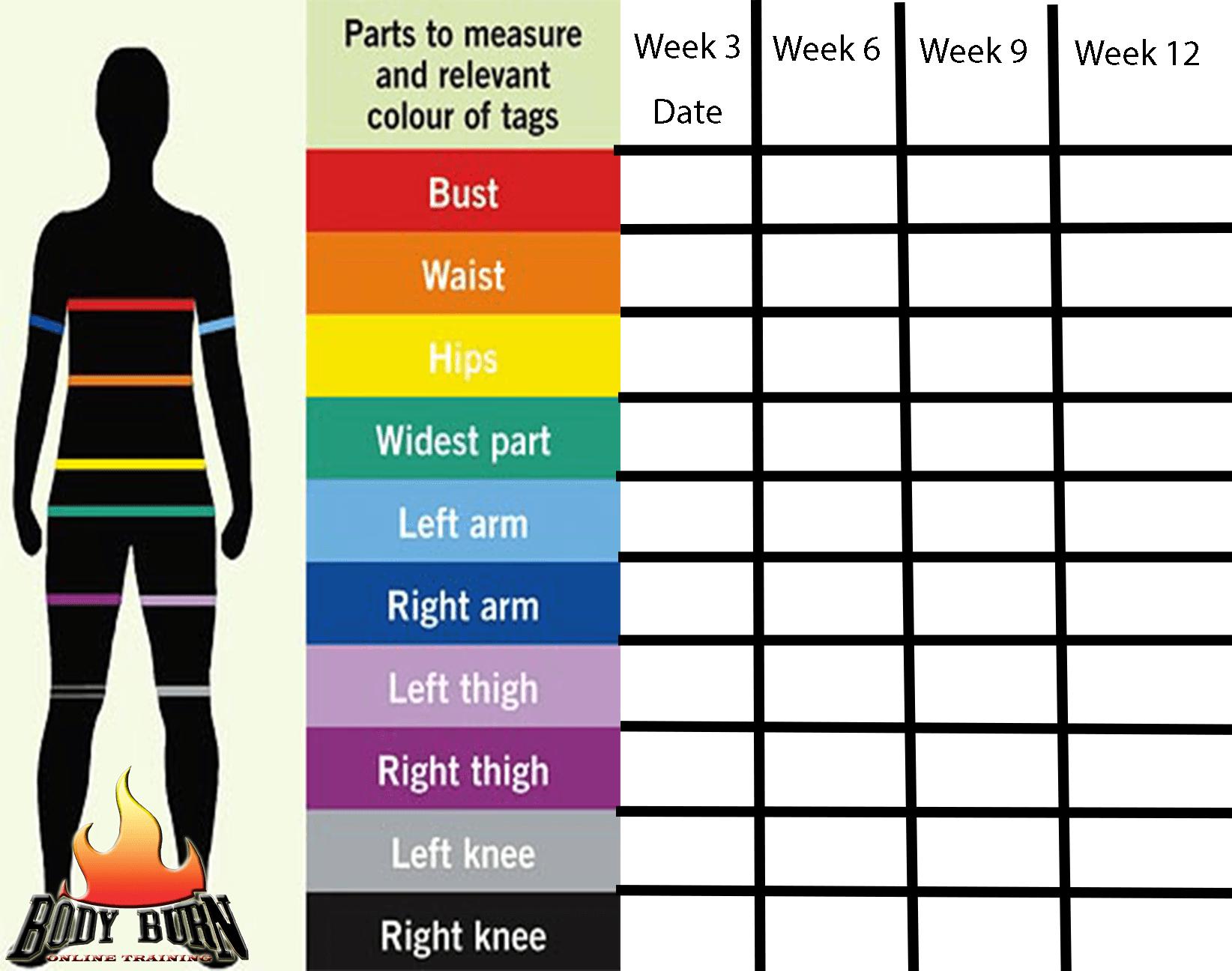 Body Parts Measurement Worksheet