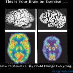 Exercise and Your Brain – 20 Minutes Could Change Everything