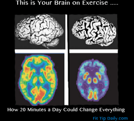 exercise and your brain
