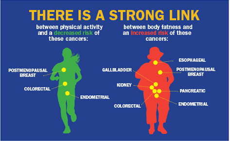 cancer research and exercise