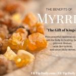 The Benefits of Myrrh Essential Oils