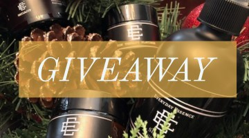 Holiday Giveaway from Everyday Essence