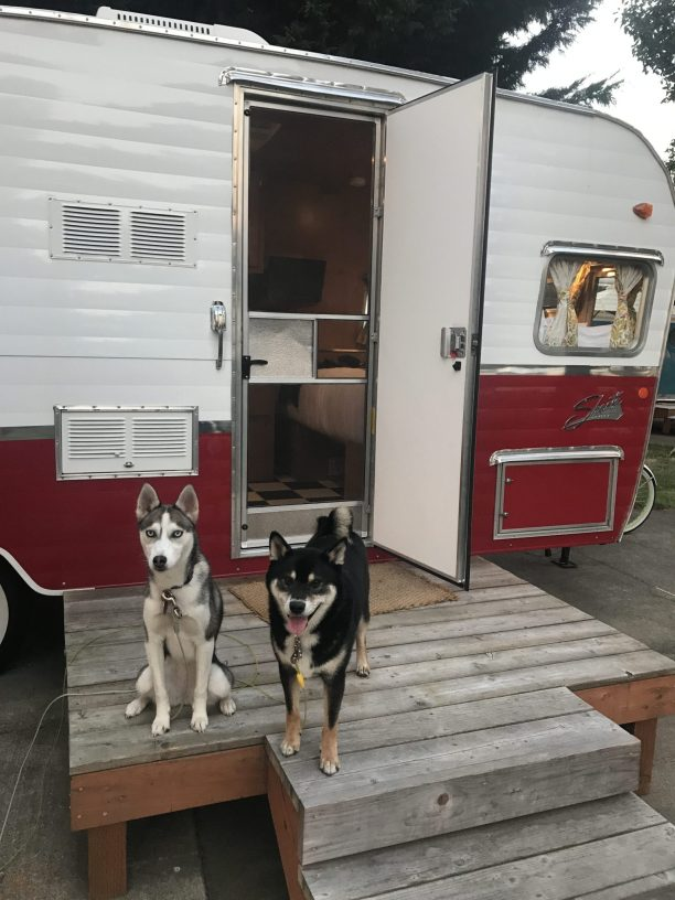 The vintages trailers dog friendly Oregon