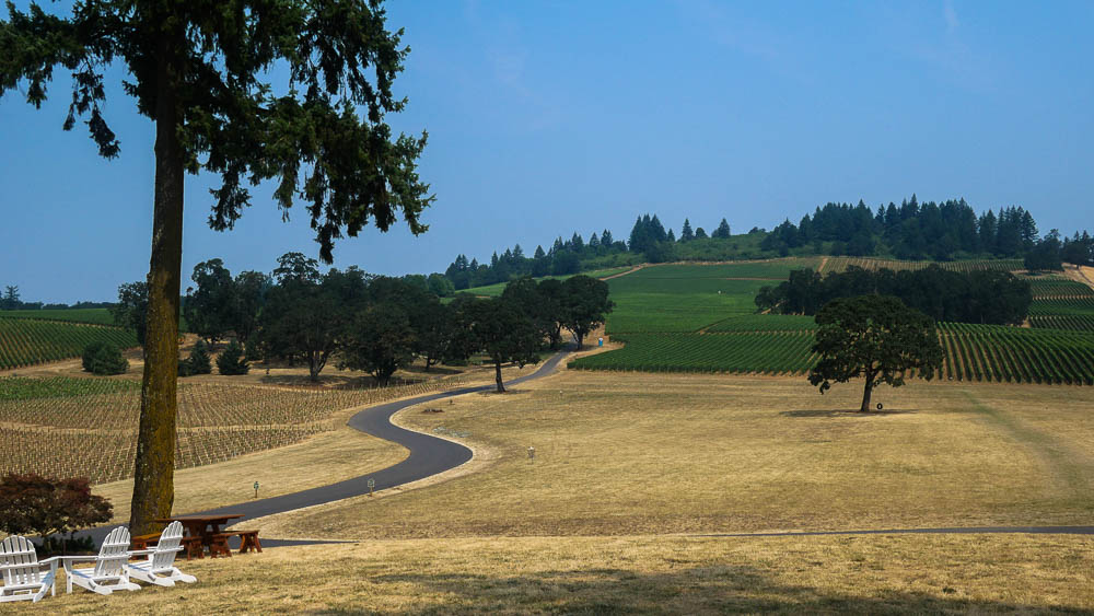 Oregon Wine Country Guide Stoller Family Winery Fittwotravel.com