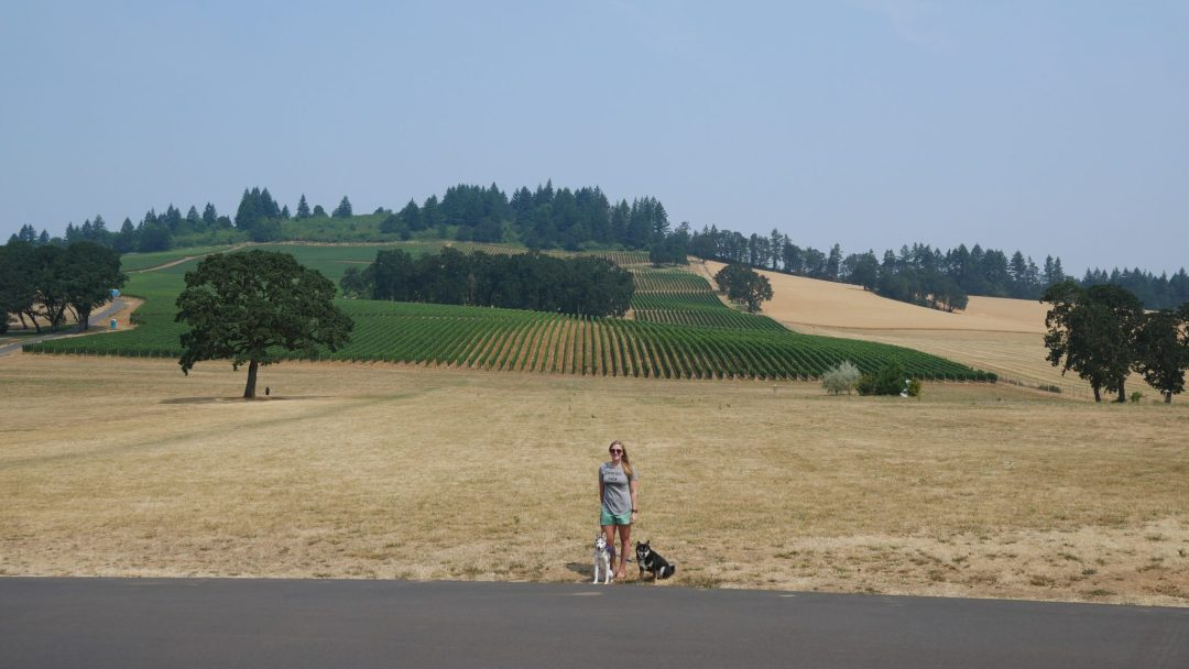 Dog friendly wineries Oregon Fittwotravel.com