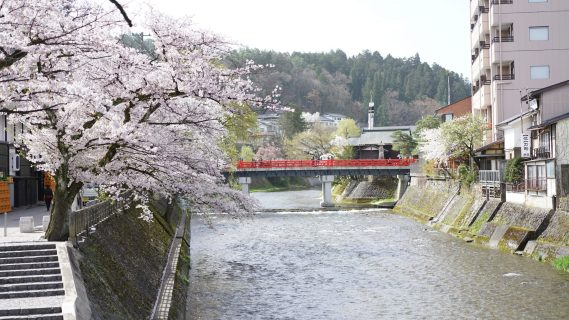 japan budget tips fittwotravel.com