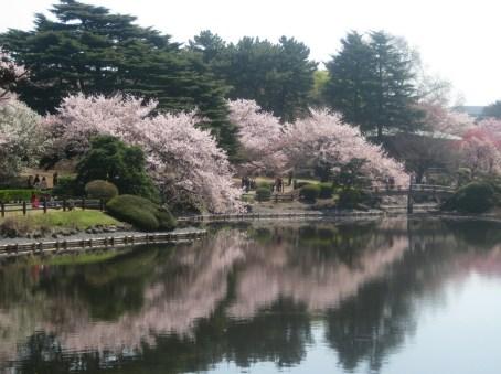 tokyo-2019bucketlist- travelsisters