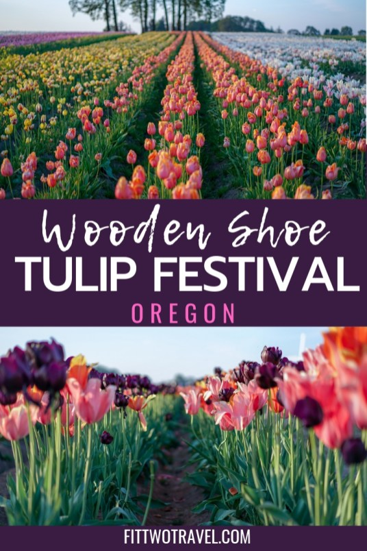 Although its not quite the Netherlands, Oregon has its own Tulip Festival that deserves visit. The Wooden Shoe Tulip Festival has over 40 acres of tulips, including fun activities for kids, dog friendly, and plenty of food and drinks to buy #tulipfestival #oregon