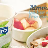 Vegan yoghurtvariatie