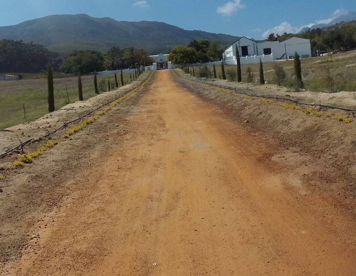 [Cape Epic 2016] 第四站 Stage 4_03
