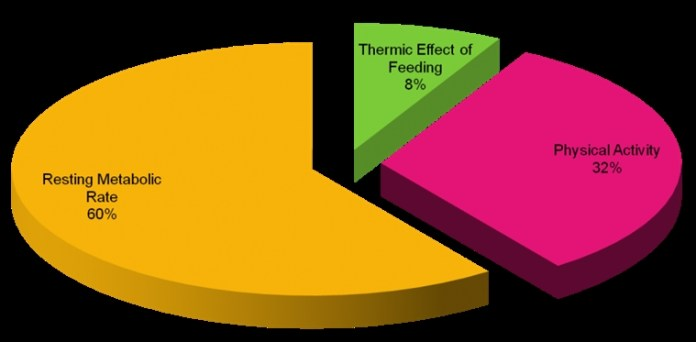 %e5%a6%82%e4%bd%95%e8%a8%88%e7%ae%97%e8%ba%ab%e9%ab%94%e6%af%8f%e5%a4%a9%e6%b6%88%e8%80%97%e5%a4%9a%e5%b0%91%e7%86%b1%e9%87%8f-2a