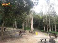[康文署推介行山路線] 獅山龍凹築鷹巢 7
