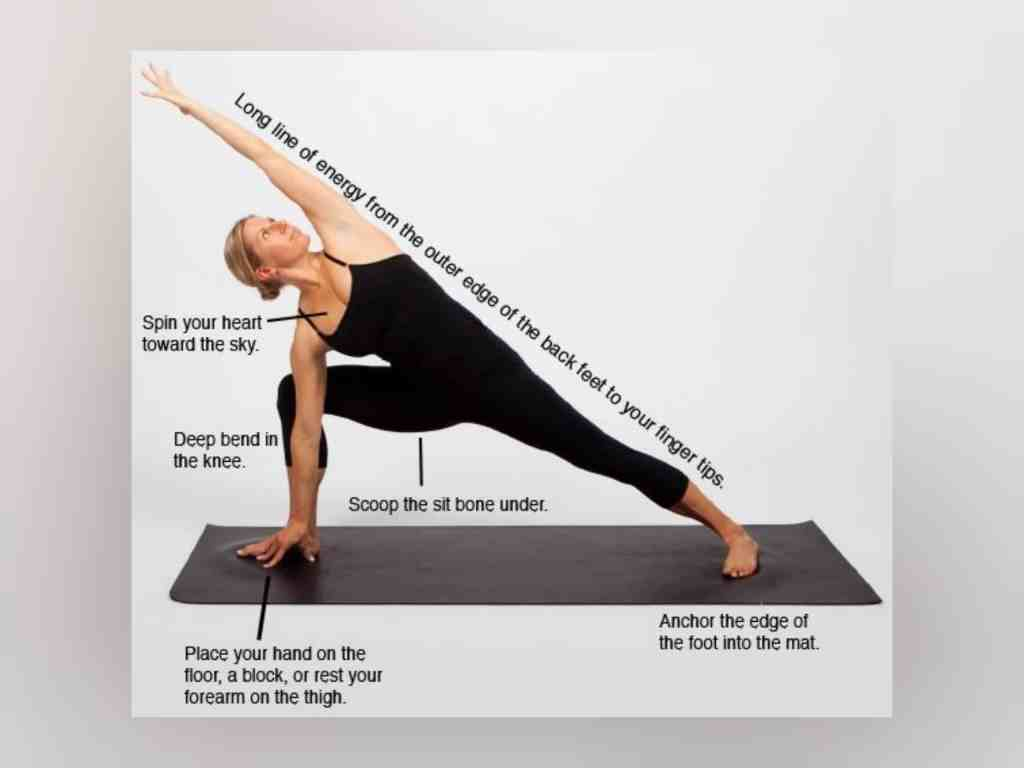 Grasshopper Pose Step by Step Instructions and Benefits - Fitzabout
