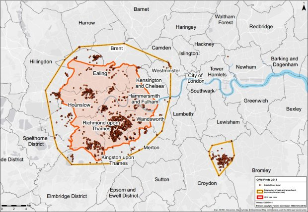 Map showing sightings of the oak processionary moth. and caterpillars.