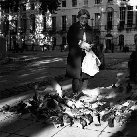 Woman feeding pigeons.