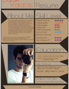 infographic-resume-4