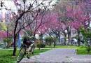 台中福順公園