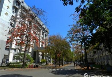 中興大學化工館