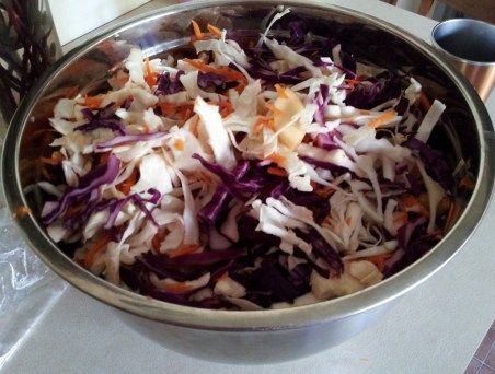 Megan's coleslaw with apple