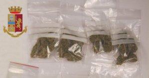 Nasconde marijuana in casa aiutato dalla madre. Arrestato diciottenne di Lavagna