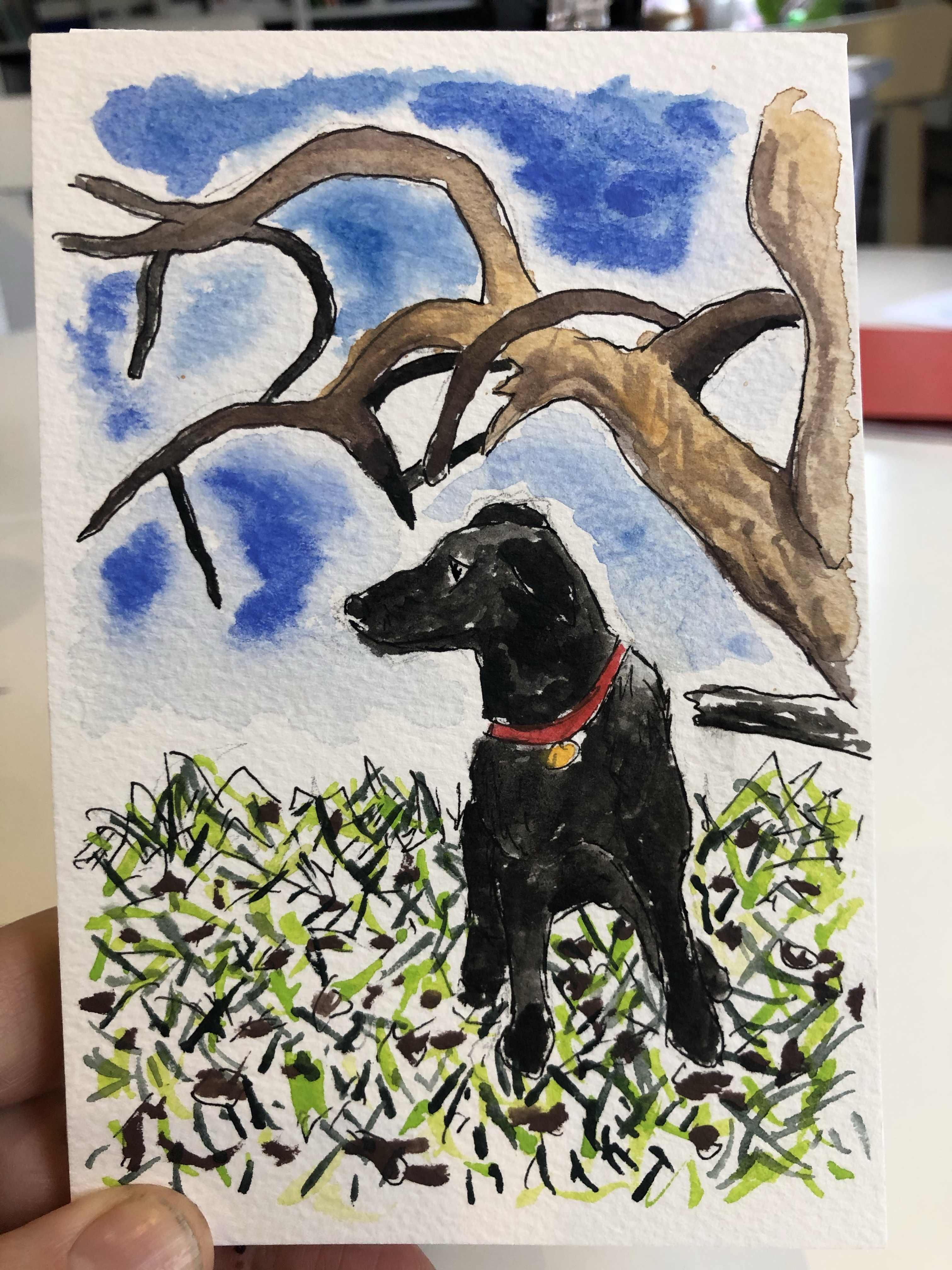 Watercolor painting of a dog under a tree.