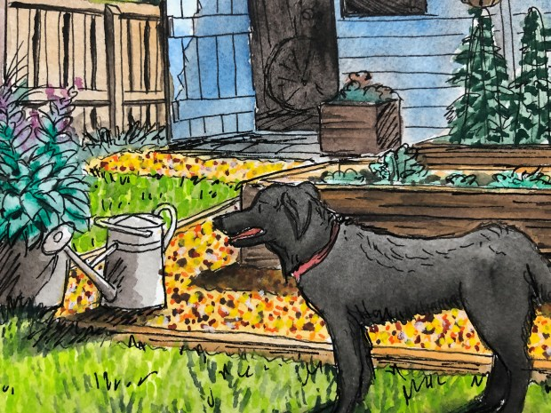 Close-up of painting of garden shed and dog.