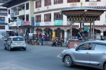 Street dogs in Thimpu