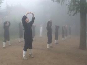 Wudang Qigong