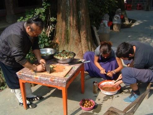 Taoist Medicine