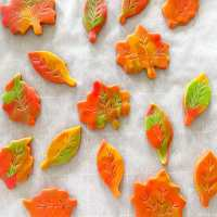Marbled Fall Leaf Sugar Cookie Cutouts